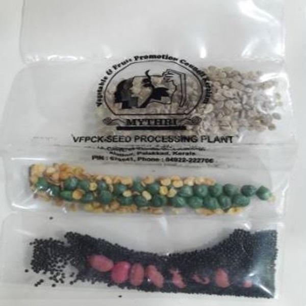 Seeds (Assorted - 10g)